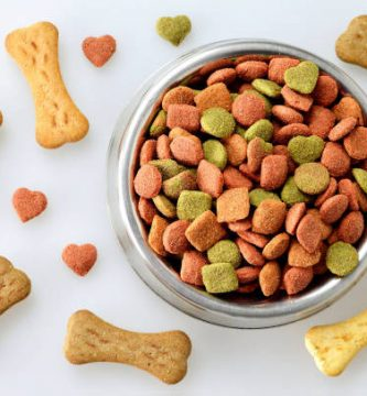 comida para caninos